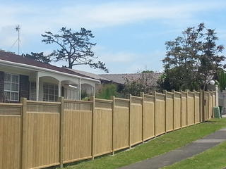 Dressed Oriental Top Fence With Matching Gate